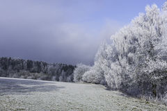 Winter landscape. Fairytale winter landscape in the Czech Central Mountains Stock Photos