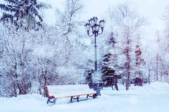 Winter landscape with falling snowflakes - bench covered with snow among frosty park winter trees. And street lanterns royalty free stock images