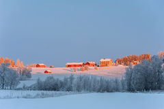 Winter landscape with farm-houses, Sweden. Typical red, wooden farm-houses set in the snowy countryside of northern Sweden Stock Photo