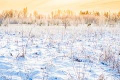 Winter landscape. Field in frost, warm sun by sunset or sundown stock photos