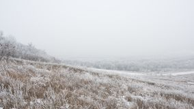 Winter Landscape with Field and Trees Covered with Frost and Snow in the Fog Stock Photo