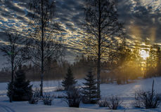 Winter landscape. Landscape at winter in Finland Royalty Free Stock Images