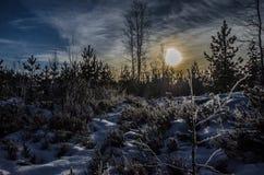 Winter landscape. Landscape at winter in Finland Stock Images