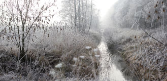 Winter landscape with fog, hoar frost and rising sun Stock Photo