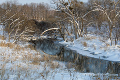 Winter landscape. In the foothills of the Sikhote-Alin, the beginning of winter Royalty Free Stock Image