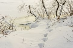 Winter landscape with footprint in deep snow. On a Dnipro riverside at evening time stock photos