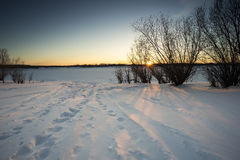 Winter landscape. Footprints in the snow. Royalty Free Stock Photos