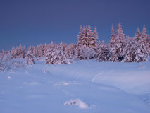 Winter landscape by forest Stock Photography