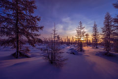 Winter landscape with forest, cloudy sky and sun. Winter landscape with forest, cliffs, tree and sun Stock Photo