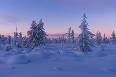Winter landscape with forest, cloudy sky and sun. Winter day landscape with taiga, cliffs and clouds on the blue sky and sun Royalty Free Stock Images