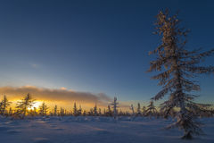 Winter landscape with forest, cloudy sky and sun Stock Photos