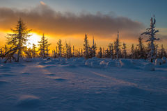 Winter landscape with forest, cloudy sky and sun. Winter day landscape with taiga, cliffs and clouds on the blue sky and sun Royalty Free Stock Photography