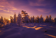 Winter landscape with forest, cloudy sky and sun Stock Photo