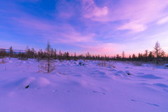 Winter landscape with forest, cloudy sky and sun. Winter landscape with forest, sun, trees, snow Royalty Free Stock Photos