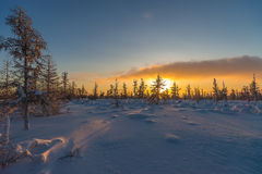 Winter landscape with forest, cloudy sky and sun. Winter landscape with forest, sun, trees, snow Royalty Free Stock Photo
