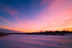 Winter landscape with forest, cloudy sky and sun. Winter landscape with forest, cloudy sky, trees, snow and sun. Pink and violet tone Stock Photos