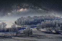 Winter landscape, forest covered by snow with sky full of stars royalty free stock photography