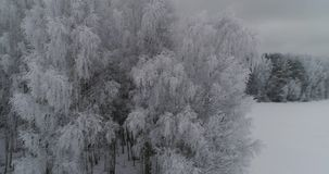 Winter landscape with forest, field. Winter landscape. Aerial view: Winter landscape countryside with snow, forest, field. Feld, forest, trees covered with stock footage