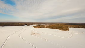 Winter landscape with forest, field. Winter landscape. The field covered with snow in a winter season. Aerial view: Winter landscape countryside, forest, field stock footage