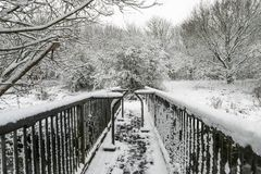Winter landscape in a forest park with trees covered with snow. Winter landscape in a forest park with trees covered with snow Stock Images