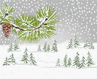 Winter landscape forest and pine  branch and pine cone  snowy  natural background vector illustration editabl Stock Photos