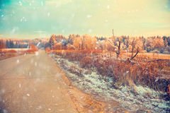 Winter landscape, forest road Royalty Free Stock Image