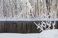 Winter landscape forest snow river water Royalty Free Stock Photo