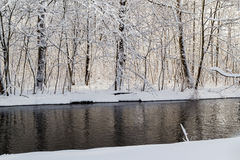 Winter landscape forest snow river water Royalty Free Stock Photography