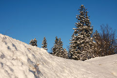 Winter landscape. Royalty Free Stock Photography