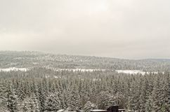 Winter landscape of forested mountains in Harz region, Germany. This photo was taken from Sonnenberg ski piste royalty free stock photo