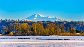 Winter landscape of the Fraser Valley in British Columbia, Canada with the dormant volcano Mount Baker in the background Royalty Free Stock Images