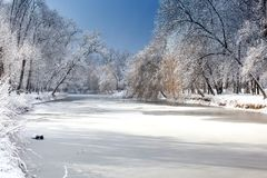 Winter landscape with fresh snow on frozen pond and trees Stock Images