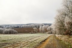 Winter landscape with frost Royalty Free Stock Photos