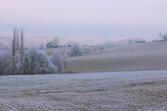 Winter landscape. Frost on trees and fields in rural hilly area, reminding of infrared photography Stock Image