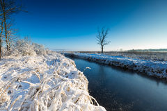 Winter landscape with frosted river and white snow Royalty Free Stock Photography
