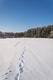 Winter Landscape. Frosty morning, winter Stock Photo
