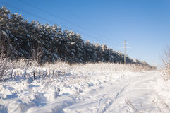 Winter Landscape. Frosty morning, winter royalty free stock images