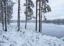 Winter landscape with frosty trees and peaceful lake at evening Stock Photography