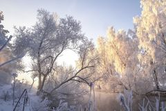 Winter landscape. Frosty trees. Scenic winter clear morning. Frost nature. Hoarfrost on trees on riverside royalty free stock images