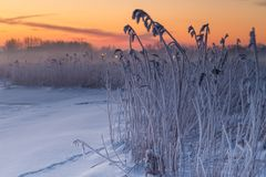 Winter landscape at frozen bay of Puck. Stock Image