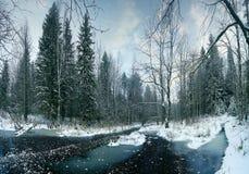 Winter landscape frozen creek Stock Photos