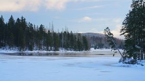 Winter landscape with frozen lake and forest in beautiful pastel colors. royalty free stock image