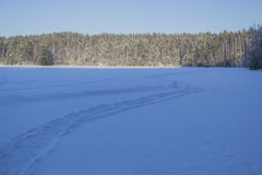 Winter landscape. Frozen lake in winter, Russia, Saint Petersburg Stock Photography