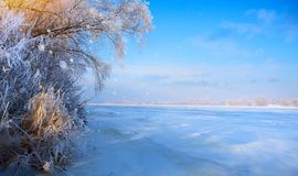 Art winter Landscape with Frozen lake and snowy trees. Winter Landscape with Frozen lake and snowy trees royalty free stock photo