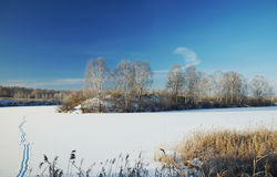 Winter landscape at a frozen pond Royalty Free Stock Photography