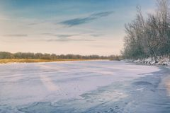 Frozen river, forest in the distance, dry sedge and blue cloudy sky. Winter landscape. Frozen river, forest in the distance, dry sedge and blue cloudy sky royalty free stock images