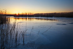 Winter landscape with frozen river, reeds and sunset sky. Royalty Free Stock Image