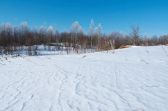 Winter landscape. frozen trees. Stock Image
