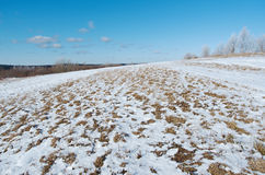 Winter landscape. frozen trees. Stock Photo