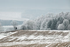 Winter landscape with frozen trees in field Stock Photos
